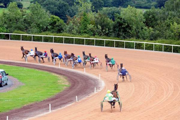 La photo du pronostic turf pmu du Mercredi 18 juillet 2018