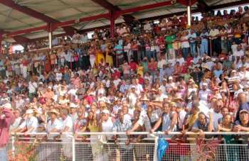 Photo Carrere tribunes hippodrome martinique public