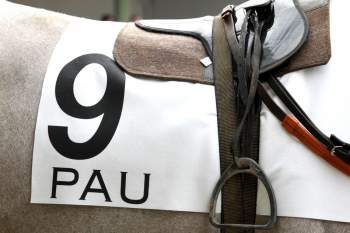 Photo Pau tapis selle galop