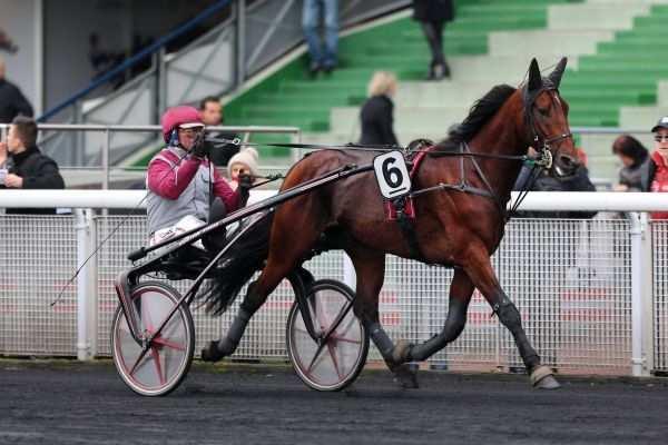 Photo de ARTISTE DE JOUDES cheval de TROT ATTELE