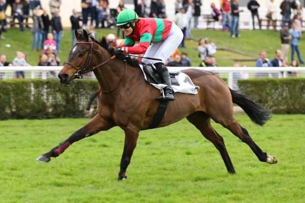 Iconic la fiche canalturf du cheval performances pmu for Garage md frere