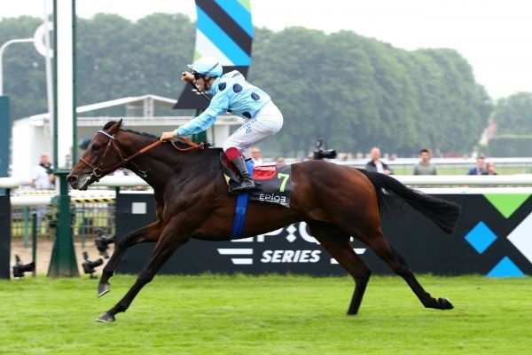 La photo de Almanzor PRIX DU JOCKEY CLUB 2016 CHANTILLY