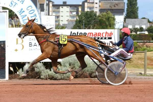 La photo du pronostic turf pmu du Vendredi 16 mars 2018