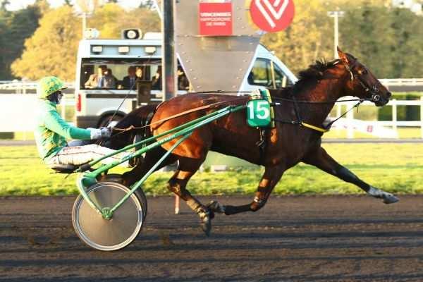Photo de CALASKA DE GUEZ cheval de TROT ATTELE