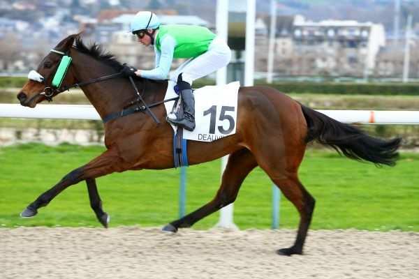 Photo de DARRELL RIVERS cheval de PLAT