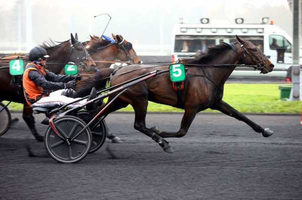 Photo de EQUATEUR MAUZUN cheval de TROT ATTELE