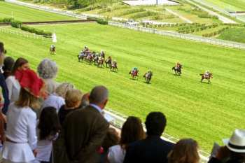 Photo Auteuil Pistes Haies Steeple Chaise