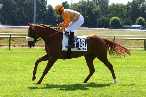 Photo de MARIANAFOOT cheval de PLAT
