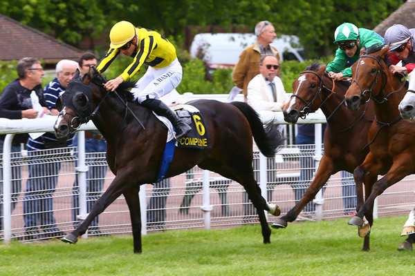 Photo de SWISS BANK  cheval de PLAT