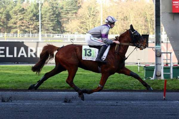 Photo de ECLAIR DESBOIS cheval de TROT MONTE