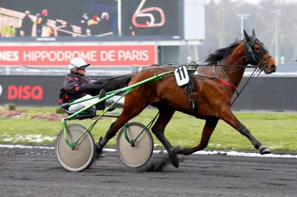 Photo de ENINO DU POMMEREUX cheval de TROT ATTELE