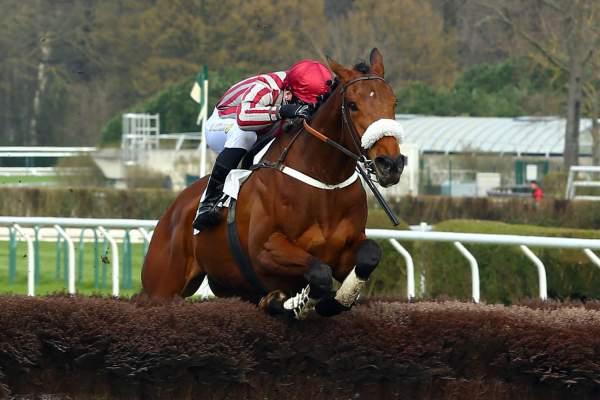 Photo de LOU BUCK'S cheval de STEEPLE CHASE