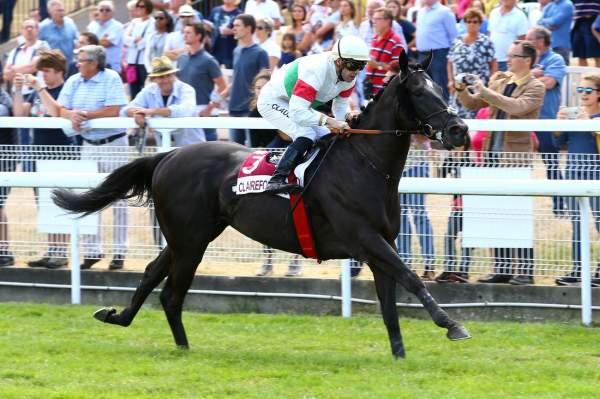 Photo de CLASSIC JOY cheval de PLAT