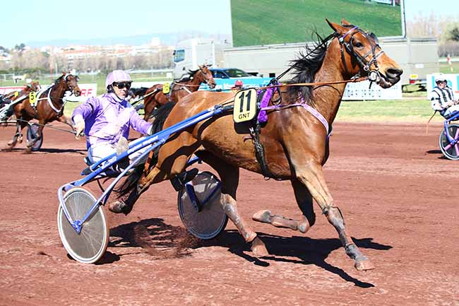 Arrivée quinté pmu GRAND NATIONAL DU TROT PARIS-TURF à MARSEILLE-BORELY