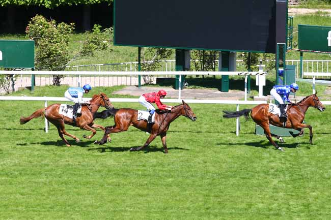 Photo d'arrivée de la course pmu PRIX PRODUCER à SAINT-CLOUD le Lundi 13 mai 2019