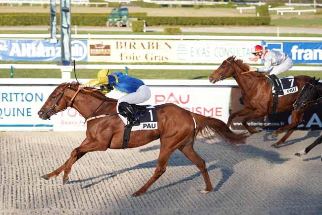 Photo d'arrivée de la course pmu PRIX CLUSTER SO HORSE ALLIANCES à PAU le Mardi 14 janvier 2020