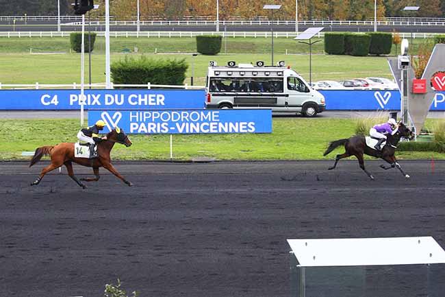 Photo d'arrivée de la course pmu PRIX DU CHER à PARIS-VINCENNES le Mercredi 28 octobre 2020