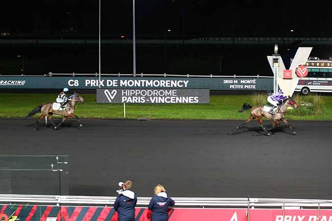 Photo d'arrivée de la course pmu PRIX DE MONTMORENCY à PARIS-VINCENNES le Dimanche 3 janvier 2021