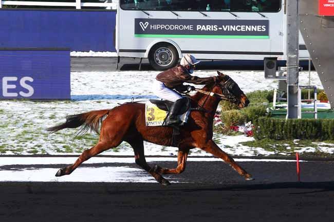 Photo d'arrivée de la course pmu PRIX DE MONTIVILLIERS à PARIS-VINCENNES le Mercredi 10 février 2021