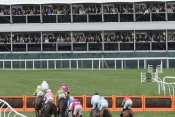 Photo Cheltenham Obstacle Steeple Chase Vue Tribunes