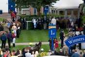 Photo Windsor Winner Enclosure