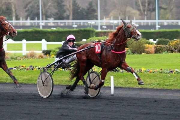 COPSI - La fiche CANALTURF du cheval, performances pmu, pédigré, évolution  de la cote en direct, résultats rapports, courses 2020