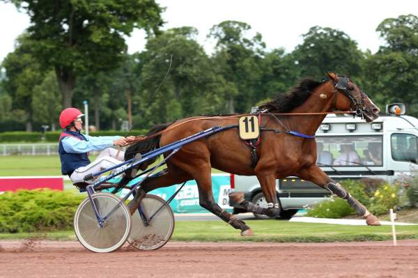 La photo de VIKING DREAM