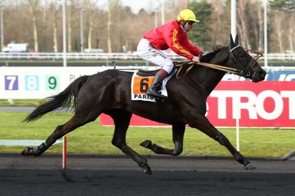 BOSS DU MELEUC - La fiche CANALTURF du cheval, performances pmu, pédigré,  évolution de la cote en direct, résultats rapports, courses 2020