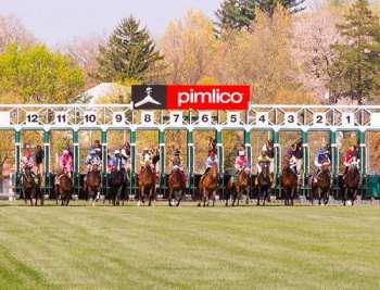 Photo Pimlico stalles de départ