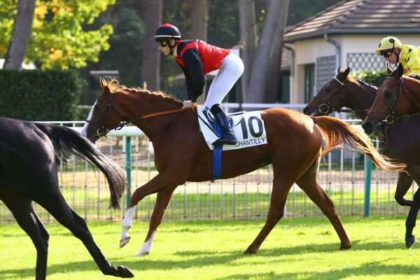 La photo du pronostic turf pmu du Lundi 25 mars 2019