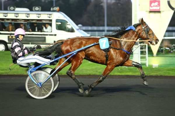 Photo de CHANTELOU LIGNERIE cheval de TROT ATTELE