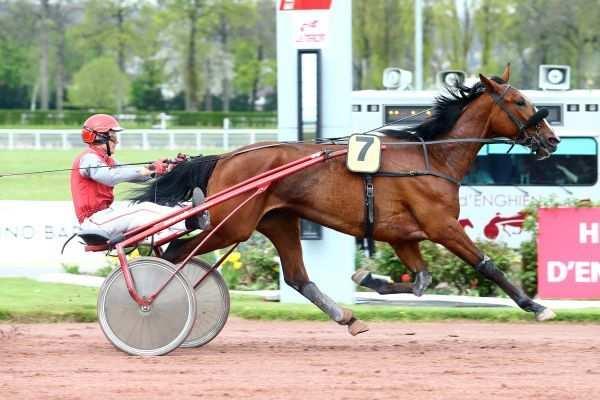 Photo de CHICA DE JOUDES cheval de TROT ATTELE