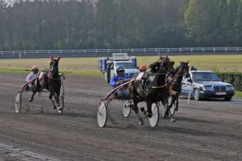 Photo Tongres autostart trot