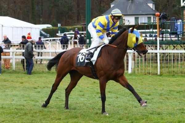 Photo de MOCKLERSHILL cheval de PLAT