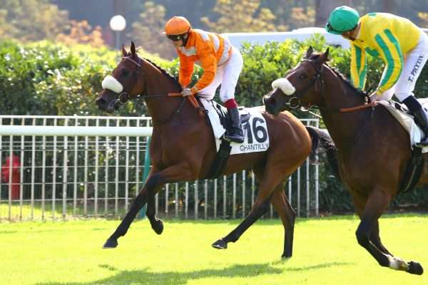 La photo de SPIRIT OF NAYEF