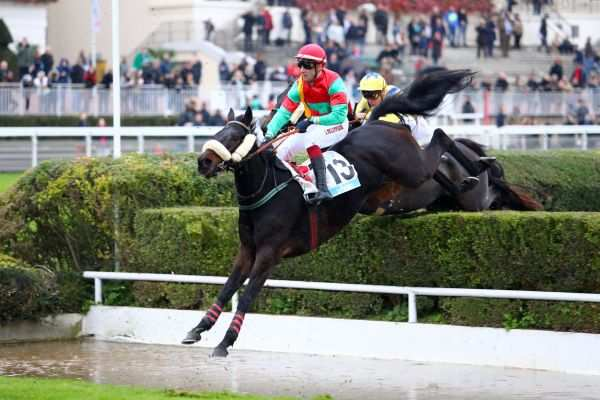 Photo de ULTRANET cheval de HAIES