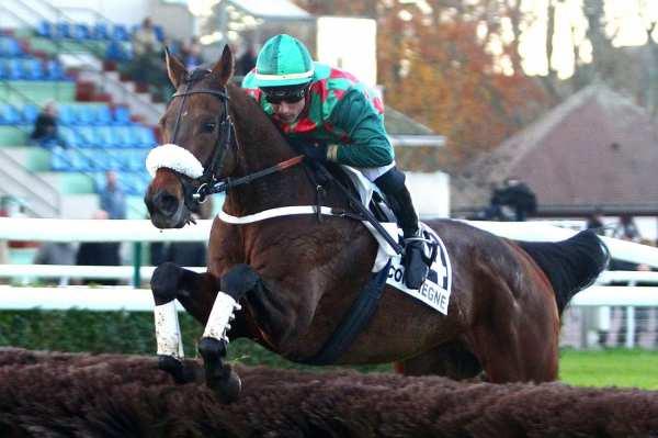 Photo de SAINT GOUSTAN BLUE cheval de STEEPLE CHASE