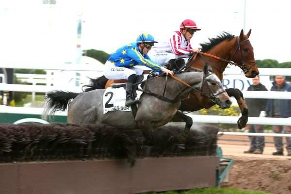 La photo de SUNDAY WINNER