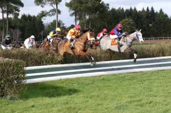 Photo Maure De Bretagne Haies Steeple Chase Course