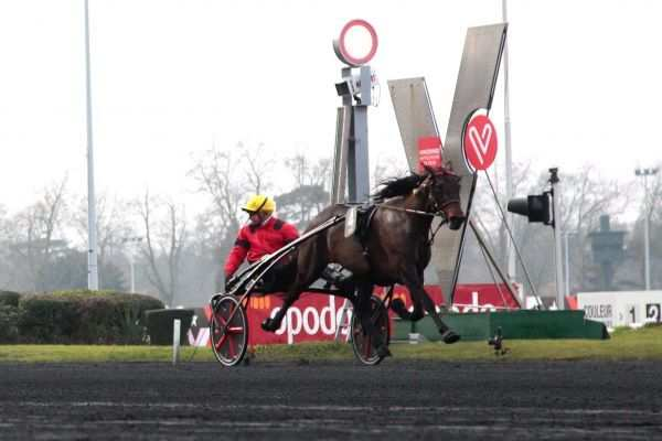 La photo de Bold Eagle
