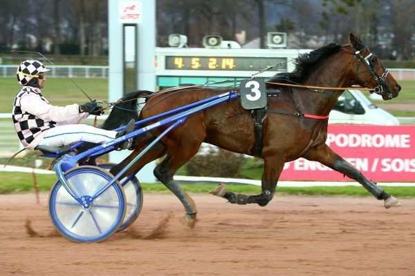 Photo de DJANGO DES CHARMES cheval de TROT ATTELE