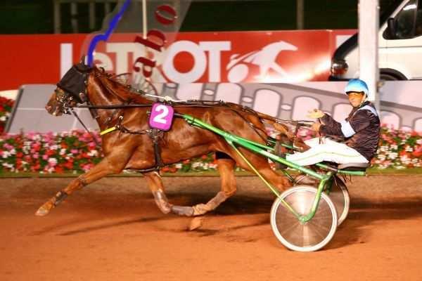 Photo de DEPIA LOULOMA cheval de TROT MONTE