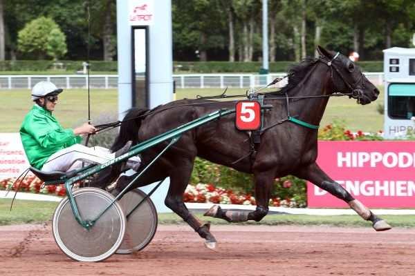 Photo de DEESSE NOIRE cheval de TROT ATTELE