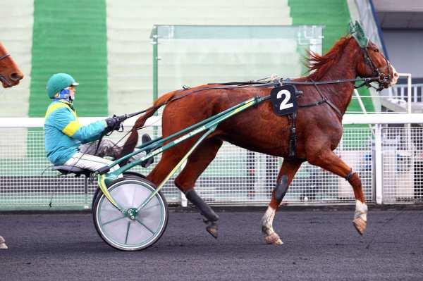 Photo de CARINA DU PARC cheval de TROT ATTELE