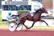 La photo de Super Fez Quinté+ pmu PRIX DE VENDEE à Lyon Parilly