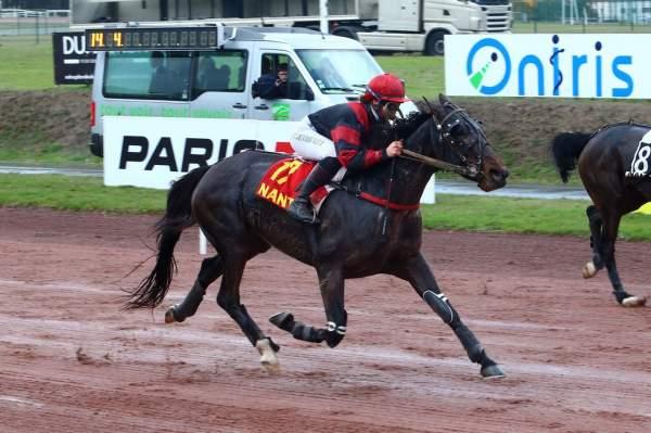 Photo de DEESSE CARISAIE  cheval de TROT MONTE