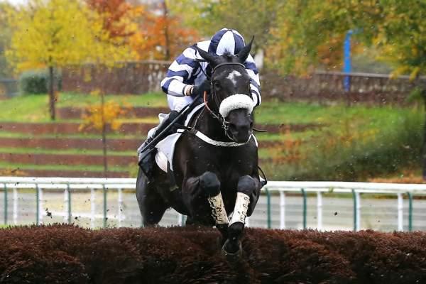 Photo de BLACK LUNA cheval de STEEPLE CHASE