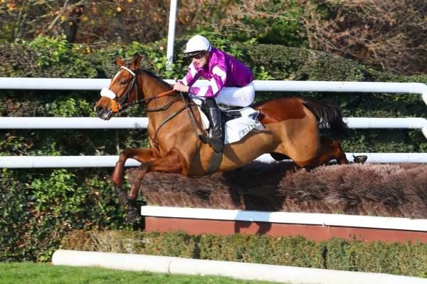 Photo de FRENCH DREAM cheval de STEEPLE CHASE