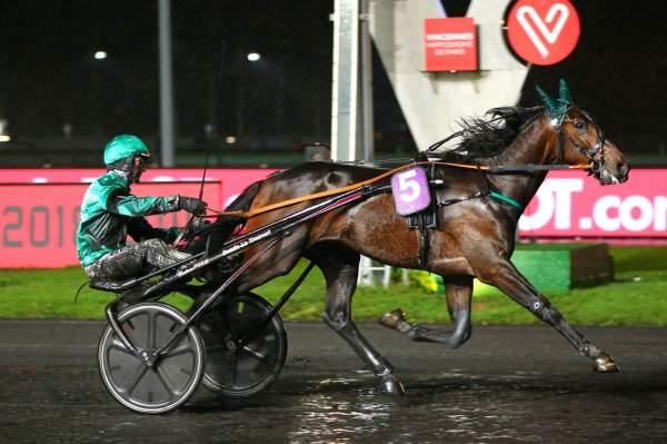 Photo de GOOD MEC D'HERIPRE cheval de TROT ATTELE
