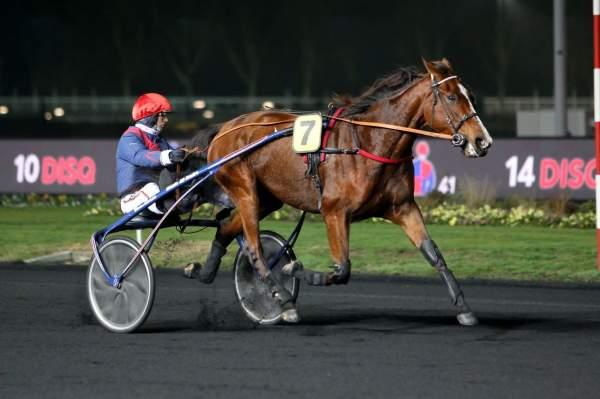 Photo de FAUVE BERRY cheval de TROT ATTELE